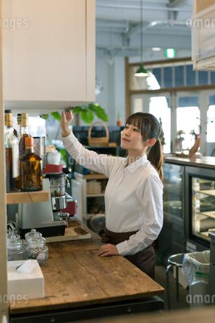 カフェのカウンターで働く女性従業員の写真素材 [FYI01776410]