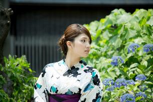 京都の浴衣女性の写真素材 [FYI01776732]