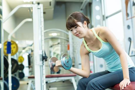 スポーツジムで筋トレする若い女性の写真素材 [FYI01777309]
