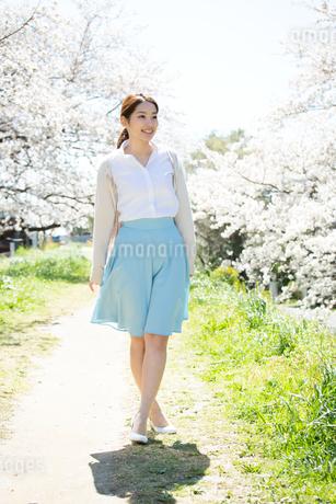 桜と爽やかな女性の写真素材 [FYI01777341]