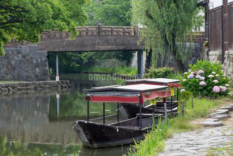 初夏の八幡堀,明治橋と船とアジサイの写真素材 [FYI01777886]