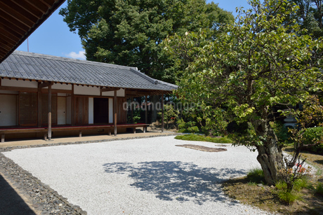 雨森芳洲庵の庭の写真素材 [FYI01777917]