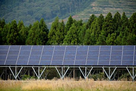 山間部の太陽光発電 ソーラーパネルの写真素材 [FYI01778034]