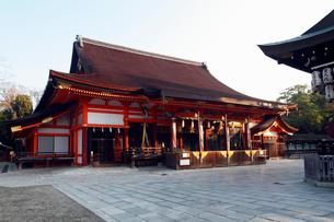 12月晩秋 八坂神社 京都の秋景色の写真素材 [FYI01778053]
