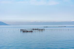 琵琶湖の伝統漁法  えり漁の写真素材 [FYI01778100]