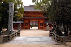 12月初冬 大三(おおみ)島の大山祇(おおやまづみ)神社の写真素材 [FYI01778141]