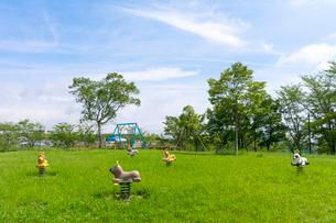 夏の公園とコアラ・ライオン・パンダ・トラ状の遊具の写真素材 [FYI01778144]