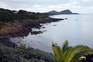 11月 五島列島の鐙瀬(あぶんぜ)溶岩海岸 の写真素材 [FYI01778291]
