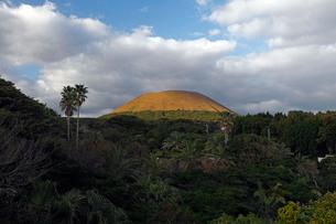 11月 五島列島の鬼岳 の写真素材 [FYI01778350]
