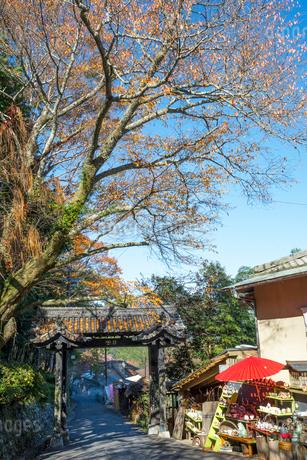 吉野山の金峯山寺黒門と紅葉の写真素材 [FYI01778364]