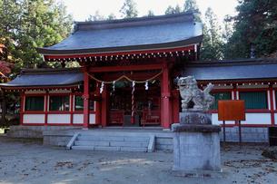 11月晩秋 富士御室浅間神社 -富士山世界遺産構成資産-の写真素材 [FYI01778427]