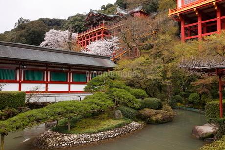 3月春 桜の祐徳稲荷神社の写真素材 [FYI01778473]
