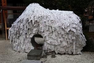 12月冬 安井金毘羅宮の縁切り縁結び碑 京都祇園の写真素材 [FYI01778487]