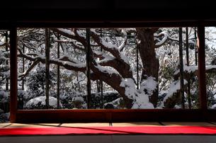 1月冬 雪の大原宝泉院 京都の雪景色の写真素材 [FYI01778489]