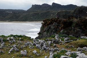 2月 沖縄の辺戸(へど)岬からみた金剛石林山の写真素材 [FYI01778518]