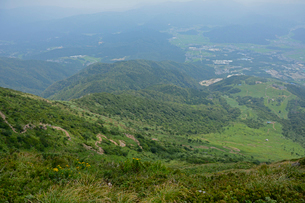 伊吹山9合目から望む登山道と3合目の写真素材 [FYI01778525]