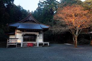 11月晩秋 村山浅間神社 -富士山世界遺産構成資産-の写真素材 [FYI01778537]