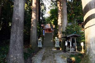 11月晩秋 須山浅間神社 -富士山世界遺産構成資産-の写真素材 [FYI01778577]