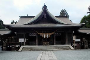 11月 阿蘇神社の拝殿の写真素材 [FYI01778591]