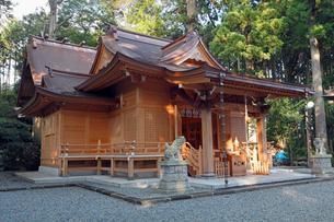 11月晩秋 須山浅間神社 -富士山世界遺産構成資産-の写真素材 [FYI01778639]