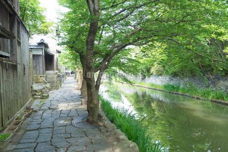 八幡堀沿いの石畳の道の写真素材 [FYI01778673]