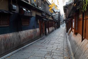 12月 初冬の祇園界隈 京都の冬景色の写真素材 [FYI01778718]