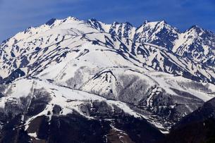 4月春,白馬村から見た残雪の北アルプスの写真素材 [FYI01778719]