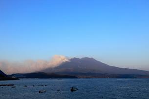 1月の朝 道の駅「たるみず」から見た噴煙を上げる桜島の写真素材 [FYI01778734]