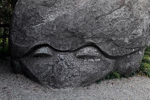 4月 亀石-飛鳥の古代石造物の写真素材 [FYI01778739]