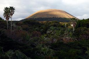 11月 五島列島の鬼岳の写真素材 [FYI01778760]