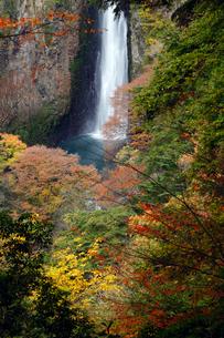 11月秋 紅葉の震動の滝 の写真素材 [FYI01778774]