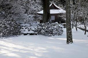 1月冬 雪の大原三千院 京都の雪景色の写真素材 [FYI01778837]