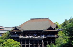 5月春,清水の舞台-新緑の清水寺-の写真素材 [FYI01778871]