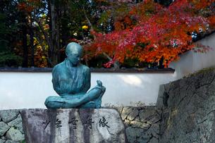 11月 紅葉の宝福寺 画聖雪舟ゆかりの寺 の写真素材 [FYI01778934]