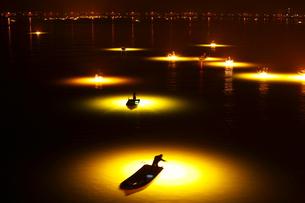 3月早春 吉野川のシラスウナギ漁 四国の春景色の写真素材 [FYI01778963]