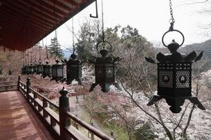 4月 桜の談山神社 奈良の春景色の写真素材 [FYI01778964]