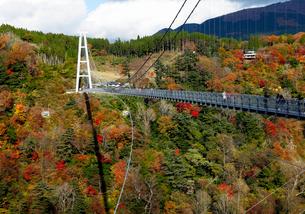11月 紅葉の九重夢大吊橋の写真素材 [FYI01779013]