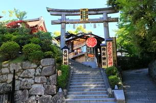 5月,えんむすびの地主(じしゅ)神社の写真素材 [FYI01779058]