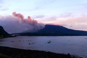 平成27年6月,道の駅「たるみず」から見た噴火する桜島の写真素材 [FYI01779074]