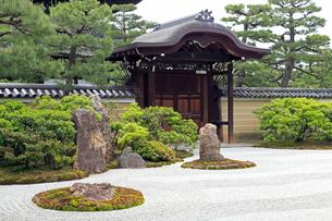 5月,新緑の建仁寺,京都の禅寺,の写真素材 [FYI01779100]