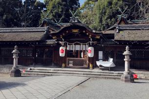 11月 秋の平野神社の写真素材 [FYI01779129]