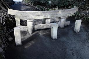 1月 黒神埋没鳥居 桜島大正大噴火の記録の写真素材 [FYI01779143]