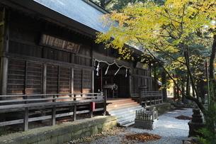 11月晩秋 紅葉の河口浅間神社 -富士山世界遺産構成資産-の写真素材 [FYI01779211]
