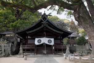 12月初冬 艮(うしとら)神社 -尾道最古の神社-の写真素材 [FYI01779212]