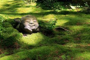 5月新緑,大原三千院のわらべ地蔵の写真素材 [FYI01779220]