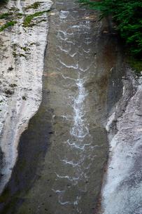 7月の滑床(なめとこ)渓谷 四国の水景色の写真素材 [FYI01779250]
