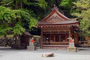 5月 緑の貴船神社 京都の春景色の写真素材 [FYI01779290]