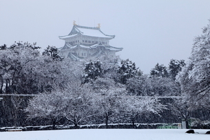 2月冬,雪の名古屋城の写真素材 [FYI01779388]