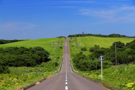 7月夏 北海道のまっすぐな道の写真素材 [FYI01779422]