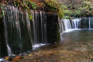 10月 紅葉の白糸の滝 軽井沢の秋の写真素材 [FYI01779437]